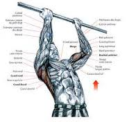 musculation aix les bains