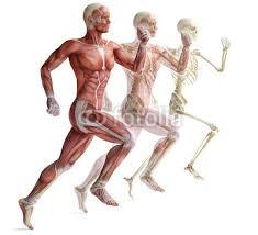aix les bains préparation physique sport course