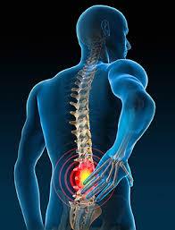 aix les bains problèmes de dos et musculation